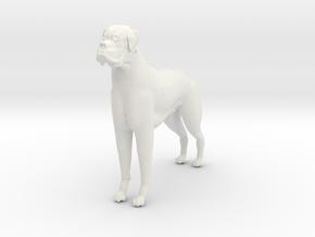 BOxXER H in White Natural Versatile Plastic