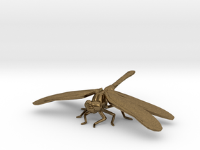 Dragonfly in Natural Bronze