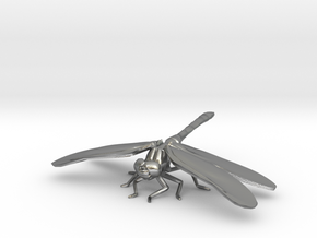 Dragonfly in Raw Silver