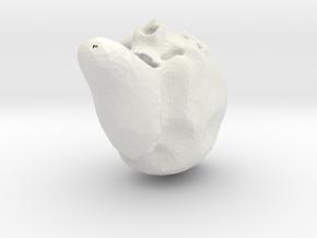 horror skull in White Natural Versatile Plastic