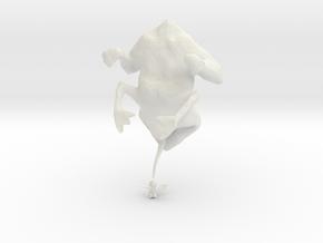 evolutionFrog_3 in White Natural Versatile Plastic