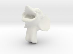 Head @ NYATA 2013 in White Natural Versatile Plastic