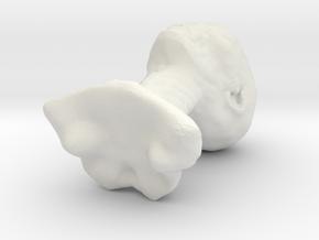 grey 1 in White Natural Versatile Plastic