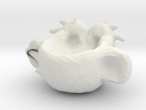 cup 2 in White Natural Versatile Plastic