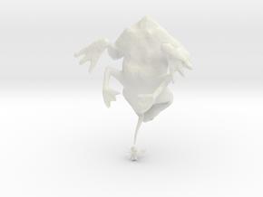 Evolution of a Frog in White Natural Versatile Plastic