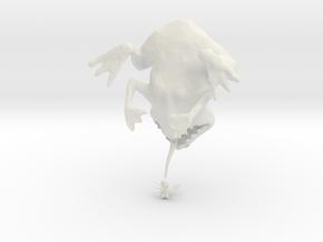 Deszk meszes barna béka in White Strong & Flexible