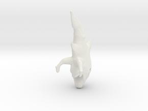 evolutionFish_3 in White Natural Versatile Plastic