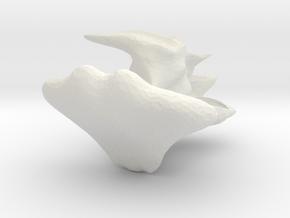4965 in White Natural Versatile Plastic