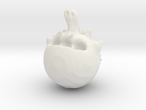 Torz'n Borz in White Natural Versatile Plastic