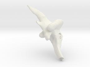evolutionFish_8 in White Natural Versatile Plastic