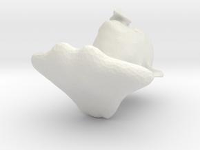 Hawk Willis in White Natural Versatile Plastic