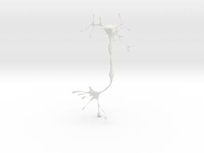 neuron in White Strong & Flexible