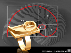 Fibonacci Spiral - Ring in Polished Gold Steel