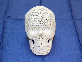 Lace Skull, Half Size in White Natural Versatile Plastic