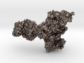 HIV-1 RTranscriptase in Polished Bronzed Silver Steel