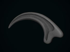 JP Velociraptor Claw in White Natural Versatile Plastic