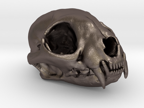 Cat skull - 45 mm in Polished Bronzed Silver Steel