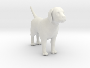 Dog in White Natural Versatile Plastic