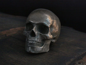 Yorick Full Skull with Latin Inscription in Stainless Steel