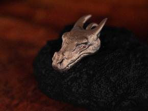 Dragon Head in Polished Bronzed Silver Steel