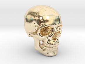 18mm 0.7in Human Skull Crane Schädel че́реп in 14K Yellow Gold