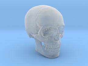 18mm 0.7in Human Skull Crane Schädel че́реп in Smooth Fine Detail Plastic