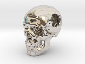 18mm .7in Bead Human Skull Crane Schädel че́реп in Platinum