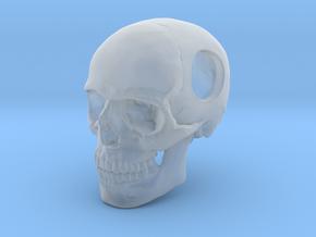 18mm .7in Bead Human Skull Crane Schädel че́реп in Smooth Fine Detail Plastic