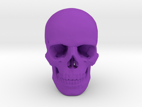 25mm 1in Human Skull Crane Schädel че́реп in Purple Strong & Flexible Polished