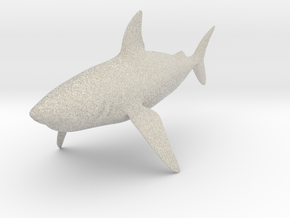 Shark in Natural Sandstone