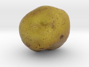 The Potato in Full Color Sandstone
