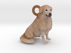 Custom Dog Ornament - Gamma in Full Color Sandstone