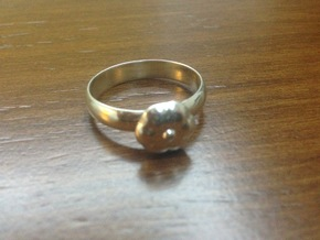 Elliptical Ring-22 mm in Fine Detail Polished Silver