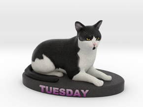 Custom Cat Figurine - Tuesday in Full Color Sandstone