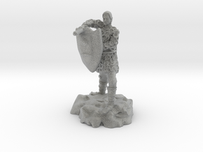 Half-elf fighter in chainmail with Kite Shield in Metallic Plastic