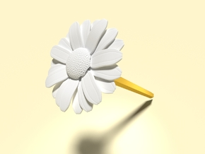 Daisy (Pen Cap) in White Strong & Flexible Polished