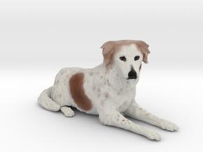 Custom Dog Figurine - Sandy in Full Color Sandstone