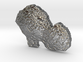 Comet 67p Token in Polished Silver