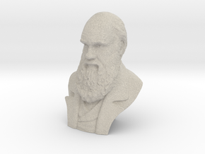 "Charles Darwin 2"" Bust in Natural Sandstone"