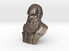 "Charles Darwin 12"" Bust in Polished Bronzed Silver Steel"