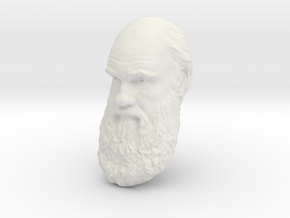 "Charles Darwin 15"" Life Size Head, Wall Mount in White Natural Versatile Plastic"