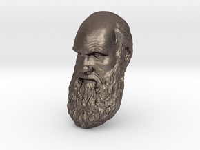 "Charles Darwin 8"" Head Wall Mount in Polished Bronzed Silver Steel"