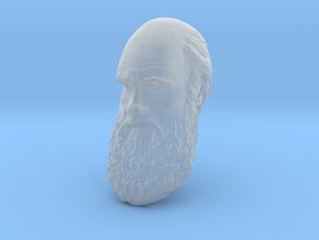 "Charles Darwin 8"" Head Wall Mount in Smooth Fine Detail Plastic"