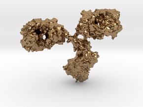 Immunoglobulin Antibody in Natural Brass
