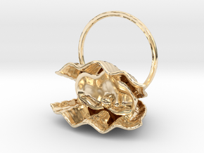 Shell in 14K Yellow Gold