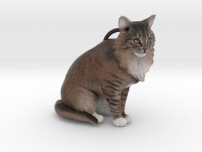 Custom Cat Ornament - Rue in Full Color Sandstone