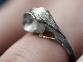Hummingbird Skull Ring in Natural Silver