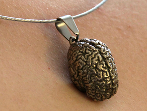 Brain Pendant in Polished Bronzed Silver Steel