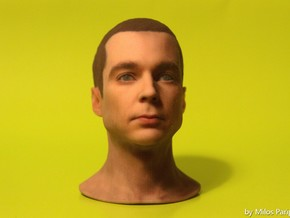 Sheldon Cooper - Jim Parsons - Scale 1/6 in Full Color Sandstone