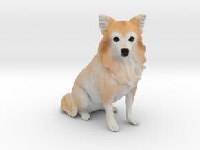 Custom Dog Ornament - Prince in Full Color Sandstone